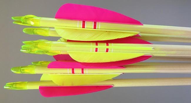 Bargain flourescent crested arrows
